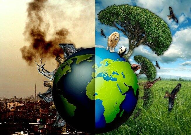 Ô nhiễm môi trường là sự biến đổi của các thành phần trong môi trường