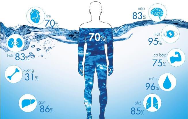 Nước chiếm tỷ lệ lớn của cơ thể