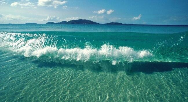 Hãy chung tay vì một môi trường biển xanh sạch