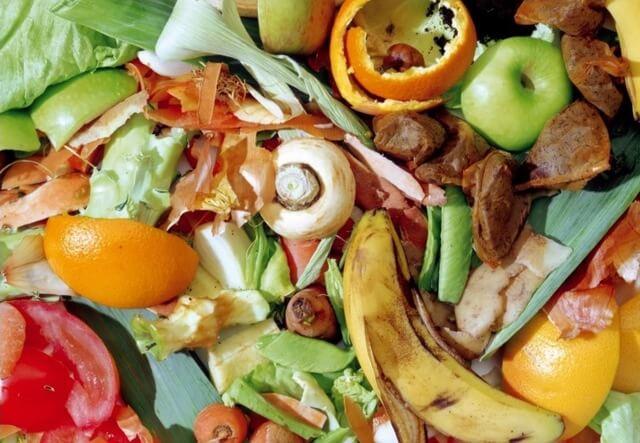 Nguồn chất thải hữu cơ bao gồm thành phần hữu cơ