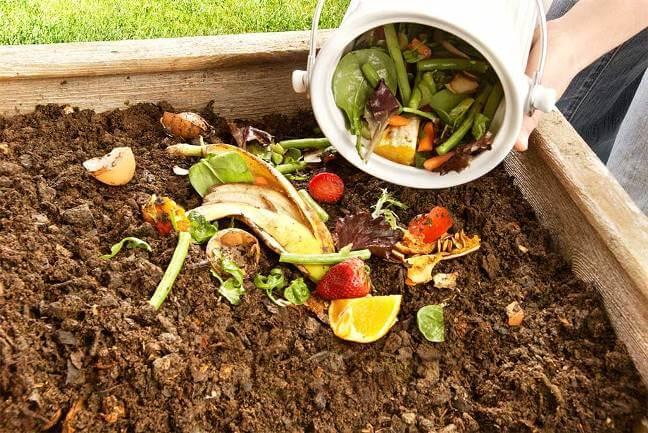 Phân hữu cơ an toàn và tốt cho môi trường