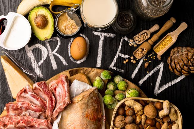 Protein hay chất đạm là những phân tử sinh học