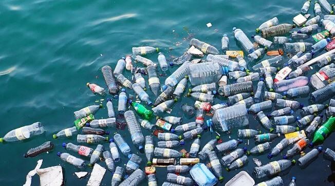Rác thải nhựa đang phá hủy môi trường sống