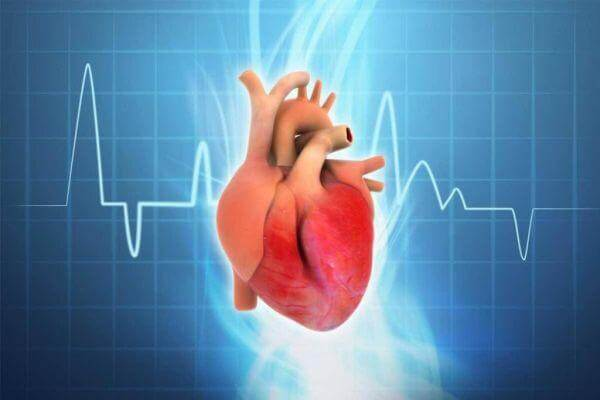 Rối loạn Magie hay Kali có thể gây ra rối loạn nhịp tim