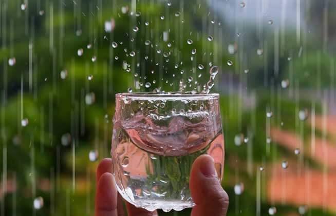 Dùng nước mưa để ăn uống có thực sự tốt?