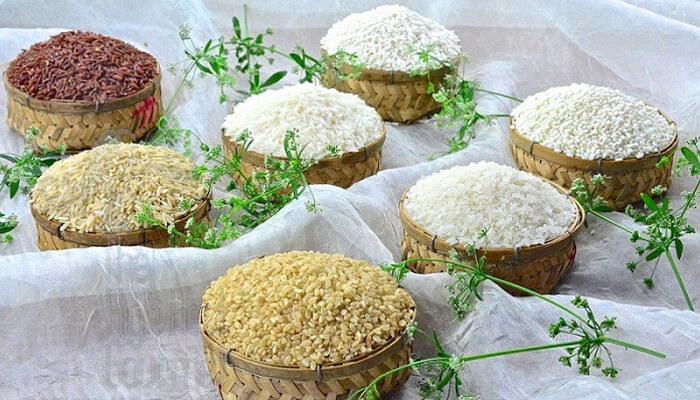 Công dụng của gạo rằn đã được chứng minh khoa học