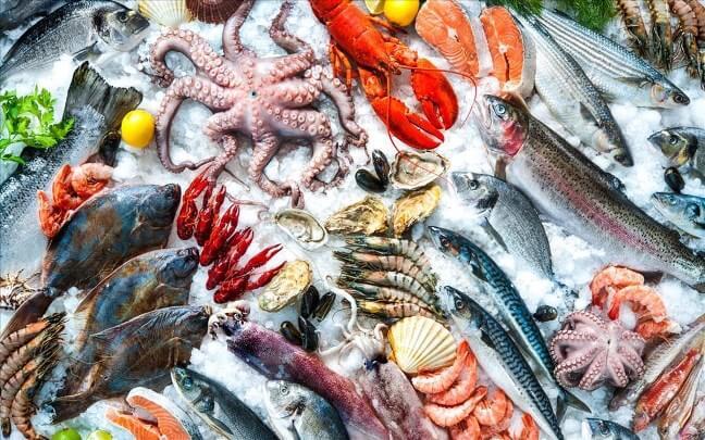 Hải sản là thực phẩm rất nhiều đạm tốt cho những người tập luyện