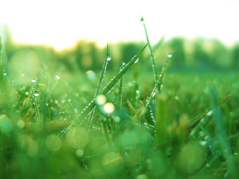 Không khí được rửa sạch sau những cơn mưa
