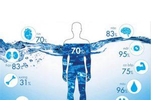Nước trong cơ thể