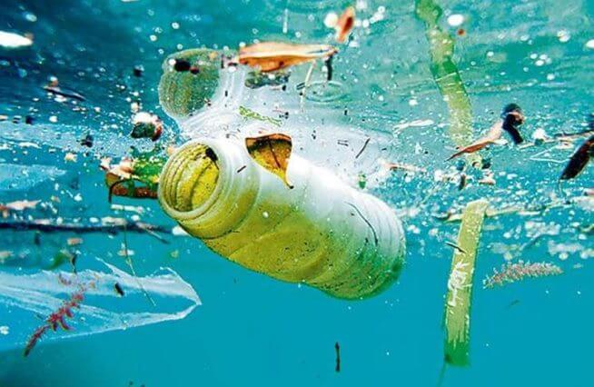 Ô nhiễm nước đang tác động trực tiếp lên bạn