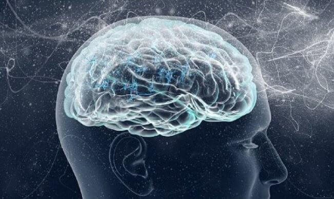 Styren gây tổn thương hệ thần kinh và làm phát triển ung thư