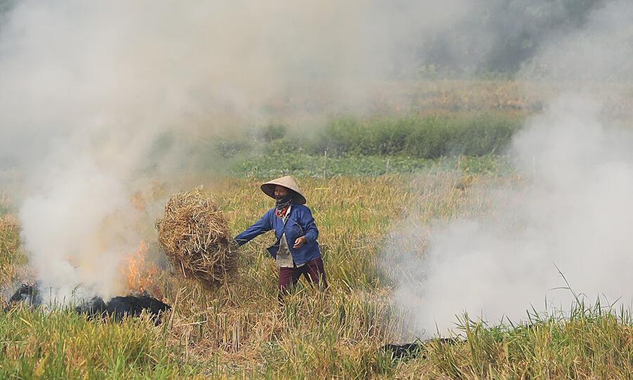 Hiện tượng nghịch nhiệt xảy ra cùng lúc với mùa gặt là một trong những nguyên tình trạng không khí đi xuống