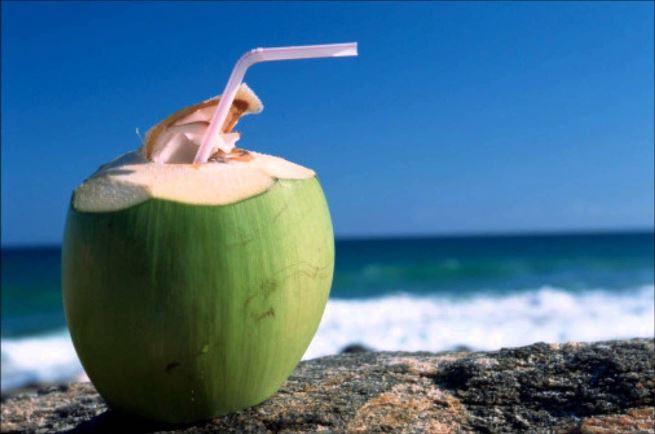 Nước dừa có chứa tới 94% nước và rất ít chất béo