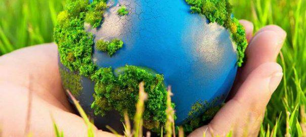 Những cách bảo vệ môi trường đơn giản nhất