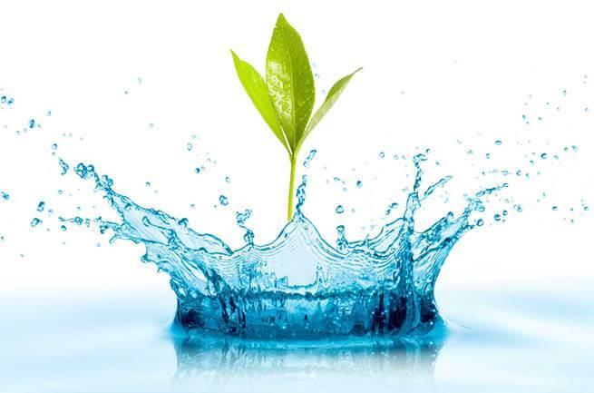 Sử dụng nước lọc máy nano để bảo vệ sức khỏe