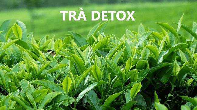 Pha chế trà detox từ nước trà xanh